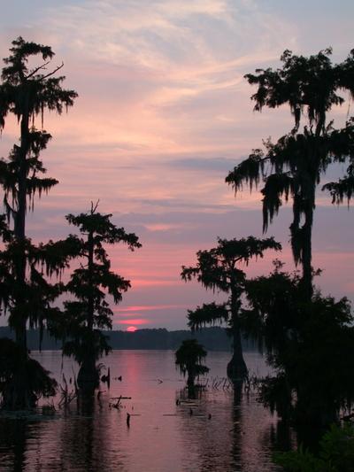 Lake_martin_sunset